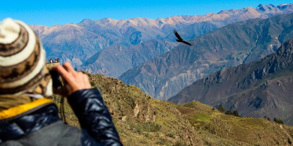 Highlights of Southern Peru Colca Canyon Tour