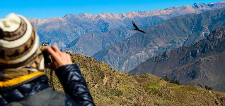 Highlights of Southern Peru Colca Canyon Tour