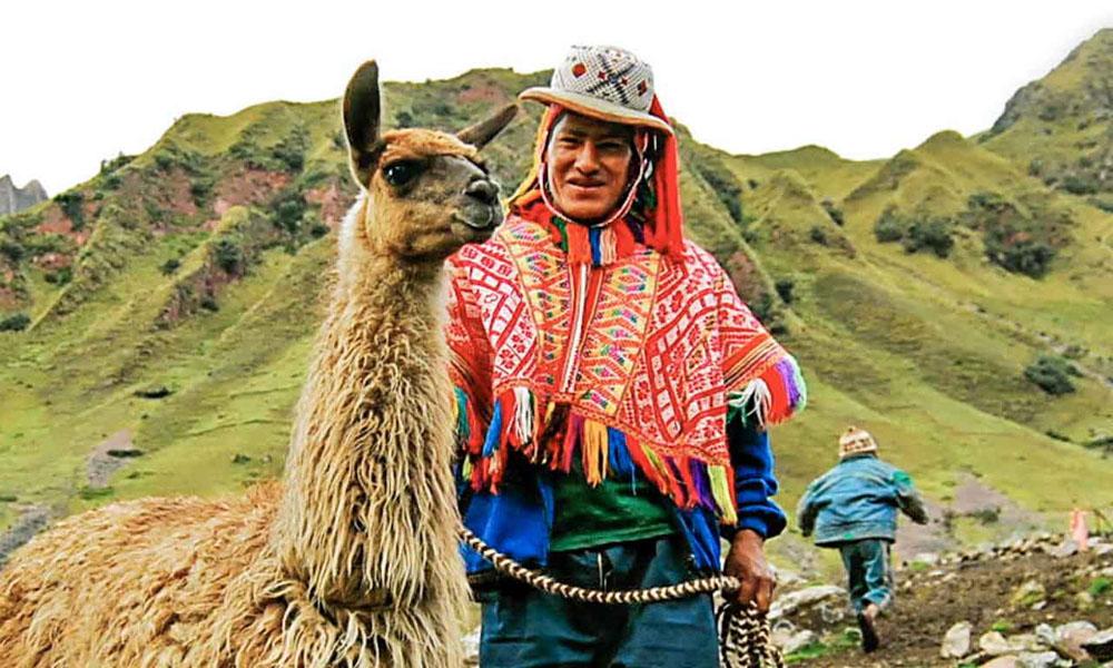 Cusco Hiking with llamas