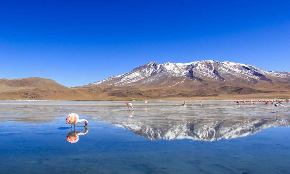Peru and Bolivia Tour Uyuni Salt flats tour