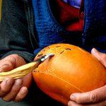 Peruvian carved gourds Huancayo peruvian Soul