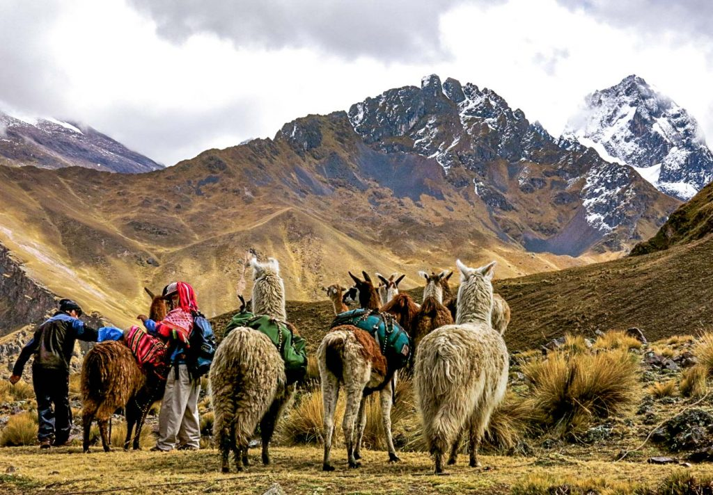 Hiking with llamas in the Sacred Valley of the Incas