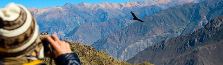 Colca Canyon, Arequipa