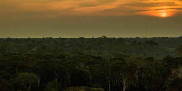 Scientific tourism in Peru